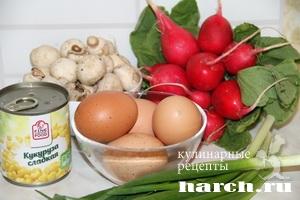 salat s redisom i gribami marina 2 Салат из редиса с грибами Марина